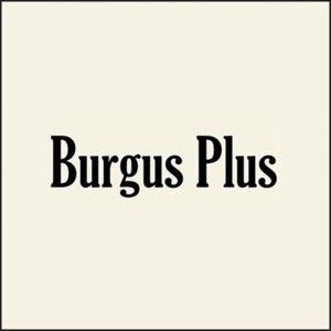 Burgus Plus Tokyo Japan Raw Denim Jeans
